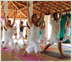 Yoga Teacher Training Course in Goa, India