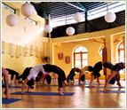 5-Day Yoga Course Booking Form for Goa Centre