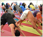 200 hr Yoga Teacher Training-HariOm International Yoga School, HoneCreek