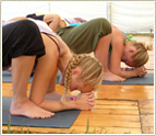200 hr Yoga Teacher Training-HariOm International Yoga School