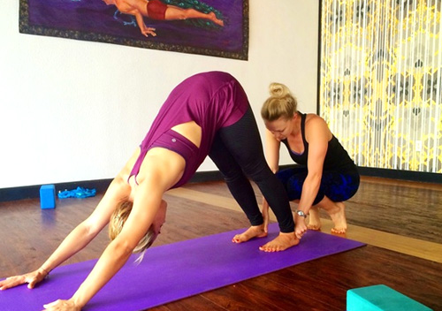 Hot Yoga Teacher Training Tampa