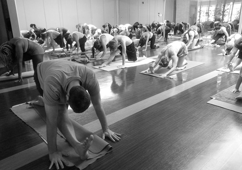 Hot or Flow Yoga Teacher Training Buffalo