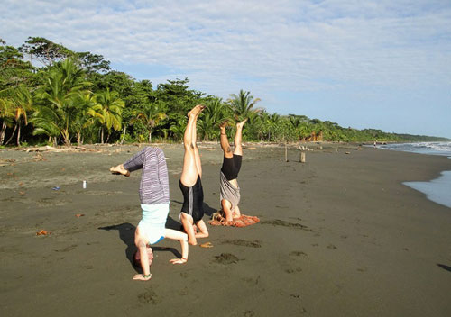 200 hour Yoga Teacher Training, multi style with Horses