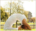 200hr Yoga Teacher Trainings YA certified, Lovina Bali