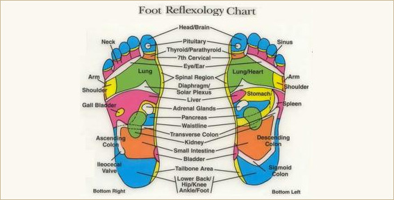Foot Reflexology Cart